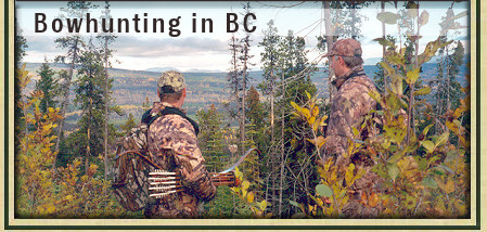 Guided Bowhunting for Moose, Bear and Cougar